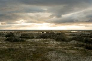 Strand / Breidavik